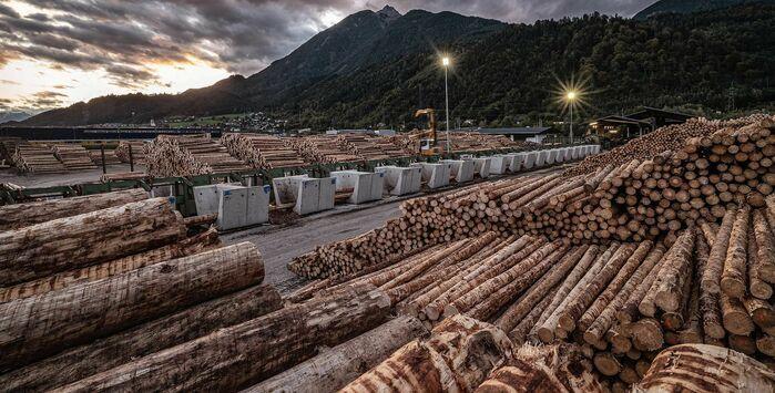 Troger Holz